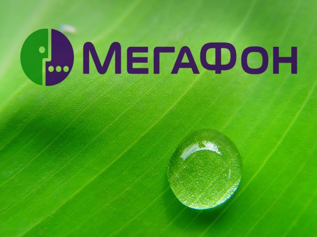 Всегда быть на связи: как перевести деньги с номера Мегафон на Мегафон